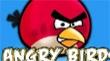 ציפורים כועסות